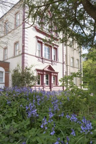 Photos of the school